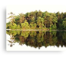 Tree Mirror Canvas Print