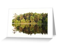 Tree Mirror Greeting Card