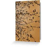 Bronze Blossom.. Greeting Card