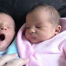What a Big Yawn by judygal