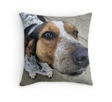 schoolyard dog Throw Pillow