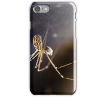 Universal Spider iPhone Case/Skin