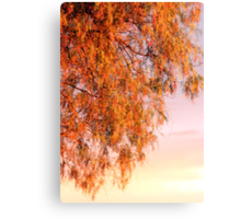 "Autumn in ""Natural Orton effect""  Canvas Print"