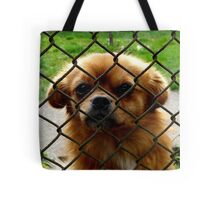 Another prisonier Tote Bag
