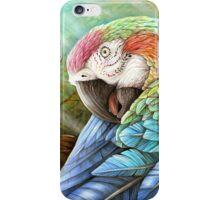Rainbow Polly iPhone Case/Skin