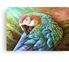 Rainbow Polly Canvas Print
