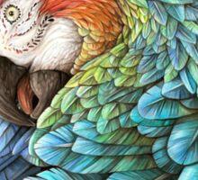 Rainbow Polly Sticker