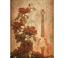 Grunge roses and violin Photographic Print