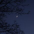 New moon - time to make a wish... by Rivendell7