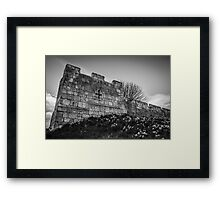 Daffodils and City Walls Framed Print