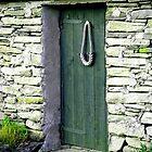 doors by delfinada