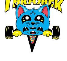 Skate Kitty by Neil Manuel
