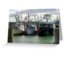 Fishing Fleet of Digby Nova Scotia, Canada Greeting Card