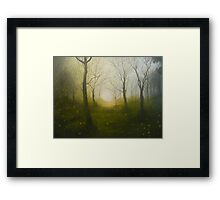 fire in the mist Framed Print