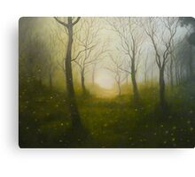 fire in the mist Canvas Print