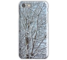 Snowy aspen branches  iPhone Case/Skin
