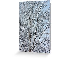 Snowy aspen branches  Greeting Card