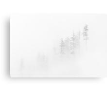 Winter Veil Metal Print
