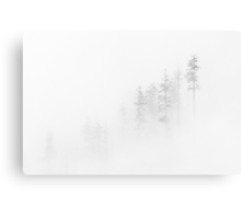Winter Veil Canvas Print