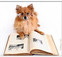 Reading Specs by grinandbearit