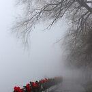 Christmas Eve Boardwalk in Fog by marybedy