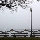 Fog on the Boardwalk by marybedy