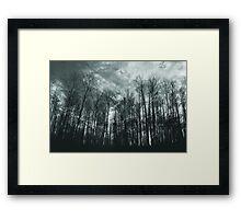 Reaching Heavenward Framed Print
