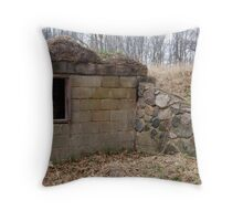 Years Gone By Throw Pillow