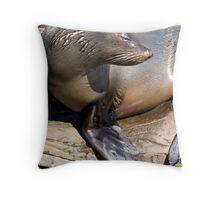 Drip-dry Seal Throw Pillow