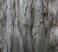 Barking Up The Wrong Tree (1) by Edward Gunn