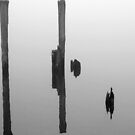 Old Piling Reflections BW by marybedy