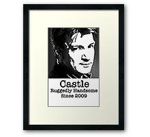 Castle -Ruggedly Handsome Framed Print