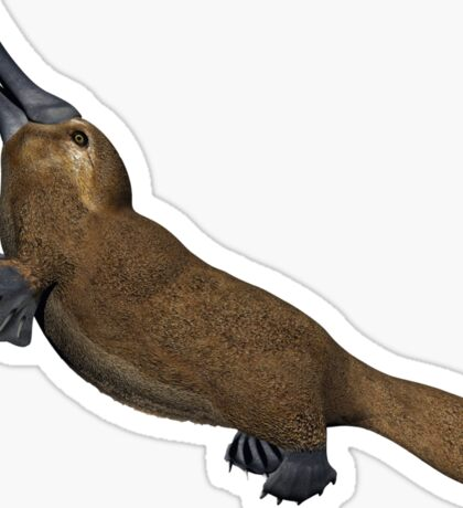 Platypus #2 Sticker