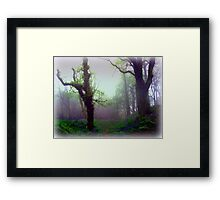 Mystical Morning Framed Print
