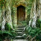 The Secret Door by Angie Latham