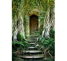 The Secret Door Photographic Print