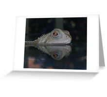 Albino Water Dragon Greeting Card
