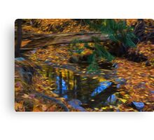 Impressions of a Little Forest Creek in the Fall Canvas Print