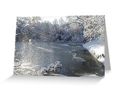 Fast shutter speed Fresh snow dropping from trees Greeting Card