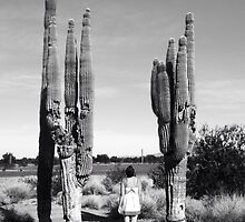 Still Standing by Saguara