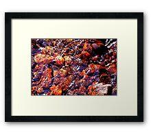 DSC_7781_nx_ldd4f---hr:::DSC_7781_nx_ld3c Framed Print