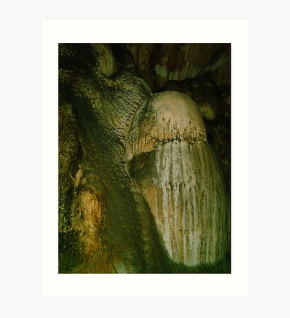 Grutas De La Estrella - Cave Formation 1 Art Print