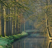 Early April in a Dutch park by jchanders