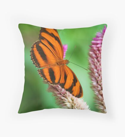 Banded Orange Butterfly I Throw Pillow