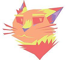 Cat 3 Photographic Print