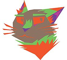 Cat 4 Photographic Print