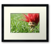 A friend for Theodore Framed Print