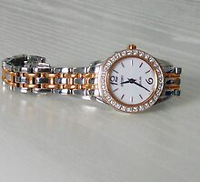 The Gift of Time - Solar Wrist Watch by BlueMoonRose