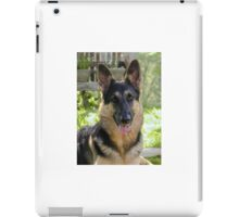 Alsatian German Shepherd Portrait iPad Case/Skin