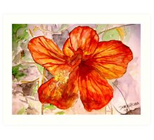 Hibiscus tropical flower 2 Art Print